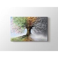 4 Mevsim Ağaç