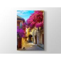 Erguvan ve Provence Sokakları