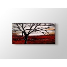 Tree on a Red Land