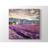 Provence - Lavanta Tarlası