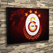 GS Galatasaray Aslan Cimbom-00003
