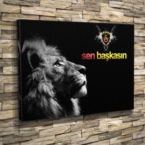 Galatasaray Gs Aslan Cimbom 0002