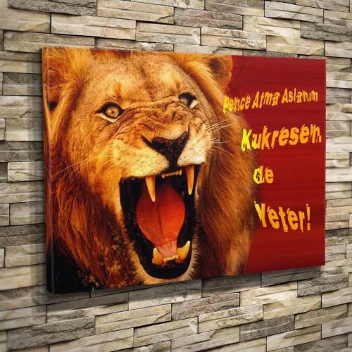 Galatasaray Gs Aslan Cimbom 0003