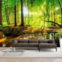 3D Efekt Doğal Ormanlık Alan Temalı Duvar Kağıdı